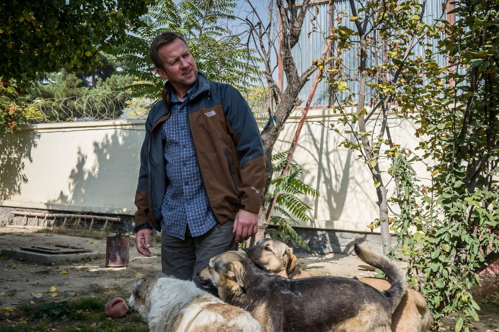 31 October 2015 - Kabul, Afghanistan. Nowzad vetinary clinic. Pen Farthing (44) ex royal marine UK navy is the founder of the clinic. The name of clinic means new born. It opened in 2013 and it is the only vet clinic in Afgahnistan.