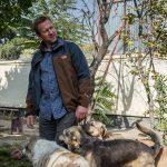 A Kabul un marine salva cani e gatti