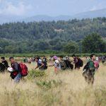 Migranti, la rotta per l'Italia passa dalla Bosnia
