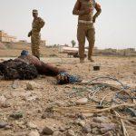 L'Afghanistan e la crisi della Nato