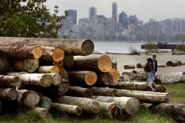Una pila di legname a Vancouver