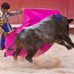 Corrida: adios spagnolo