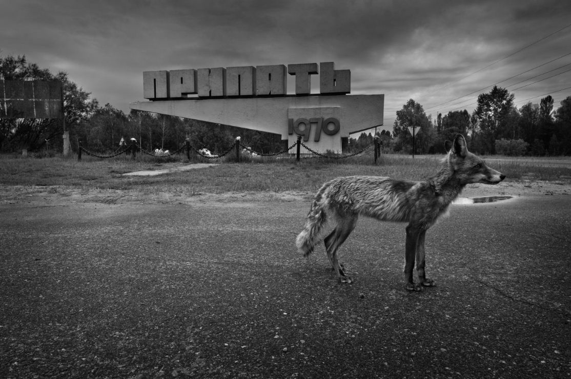@marconegri_chernobyl_06