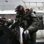 Forze speciali sudcoerane a difesa<br> del nucleare degli Emirati arabi
