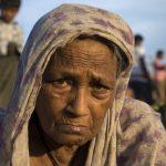 Il genocidio ignorato dei Rohingya<br> 700.000 sono sfollati nel Bangladesh