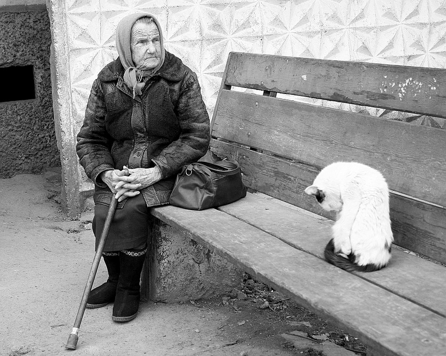 Grandma Stick Cat Shop Old Age Poverty