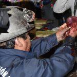 Bolivia, sangue e animali sacrificati <br> Ecco il rituale choc per Madre Terra