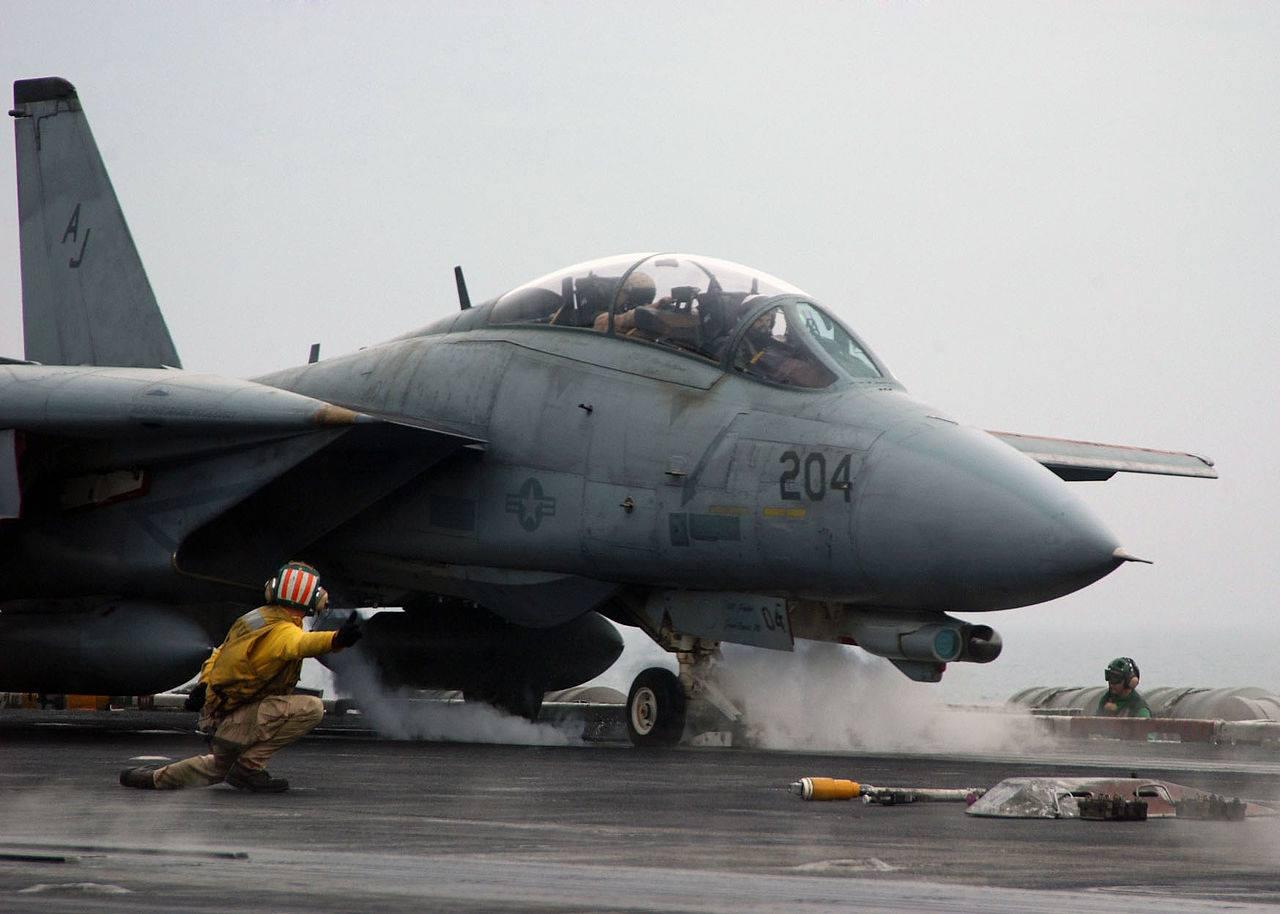 """Caccia F-14 """"Tomcat"""" (Davide Bartoccini)"""