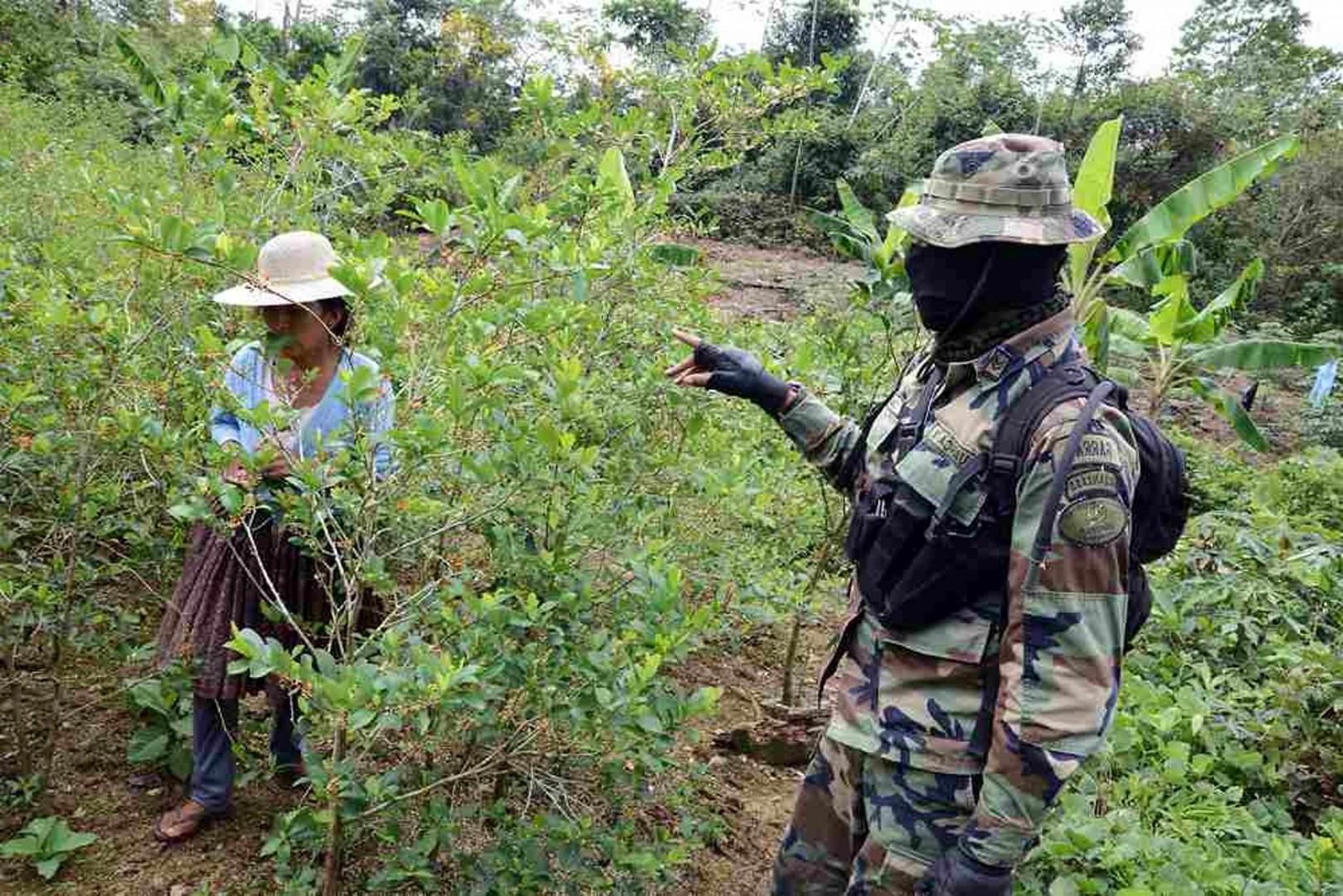 Un soldato in una delle piantagioni di cocaina in Bolivia (LaPresse)