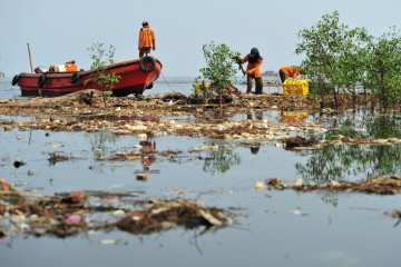 (151029) -- JAKARTA, Oct. 29, 2015 (Xinhua) -- Workers clean up the rubbish on the coast of Jakarta, Indonesia, Oct. 29, 2015. (Xinhua/Zulkarnain) ****Authorized by ytfs****