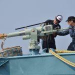 Il Giappone torna a cacciare balene <br> (e il motivo è anche politico)