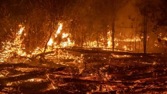 Incendi in Indonesia (Getty)