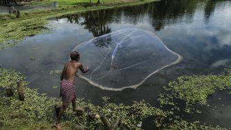 Pesca in India (LaPresse)