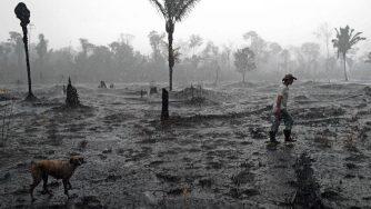 La foresta dell'Amazzonia distrutta dalle fiamme (LaPresse)