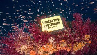 Protesta ambientalista (LaPresse)
