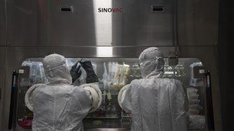 Coronavirus, laboratorio vaccini (La Presse)