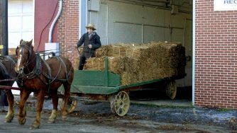 Amish in America (La Presse)