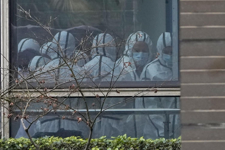 Coronavirus, continua la missione dell'Oms a Wuhan (La Presse)