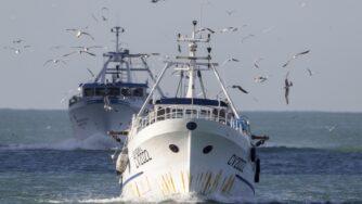 seaspiracy pesca sostenibile