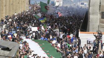 voto algeria