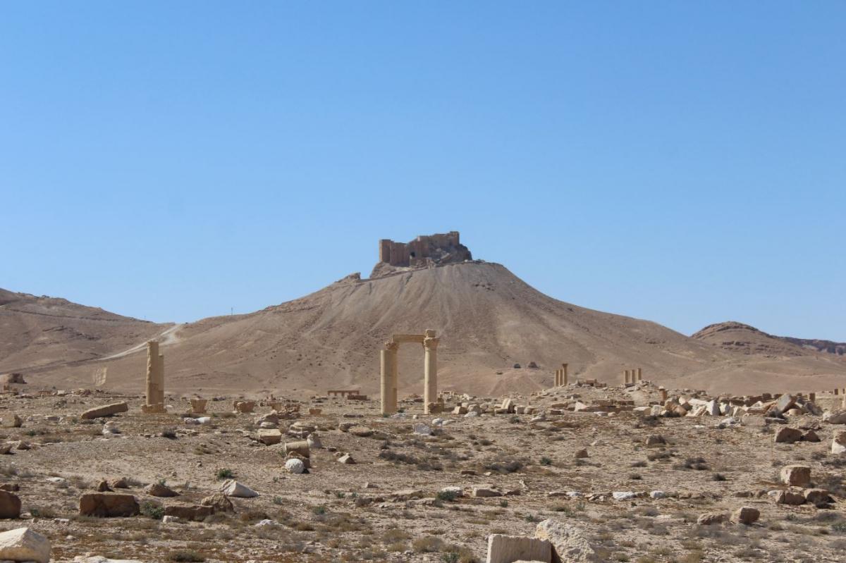 Palmira11