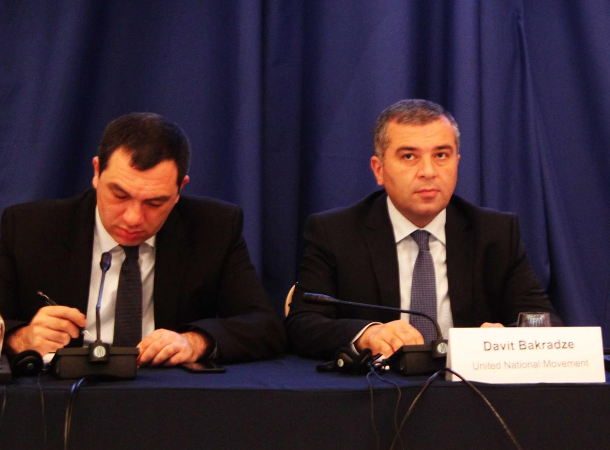 georgia_elezioni13